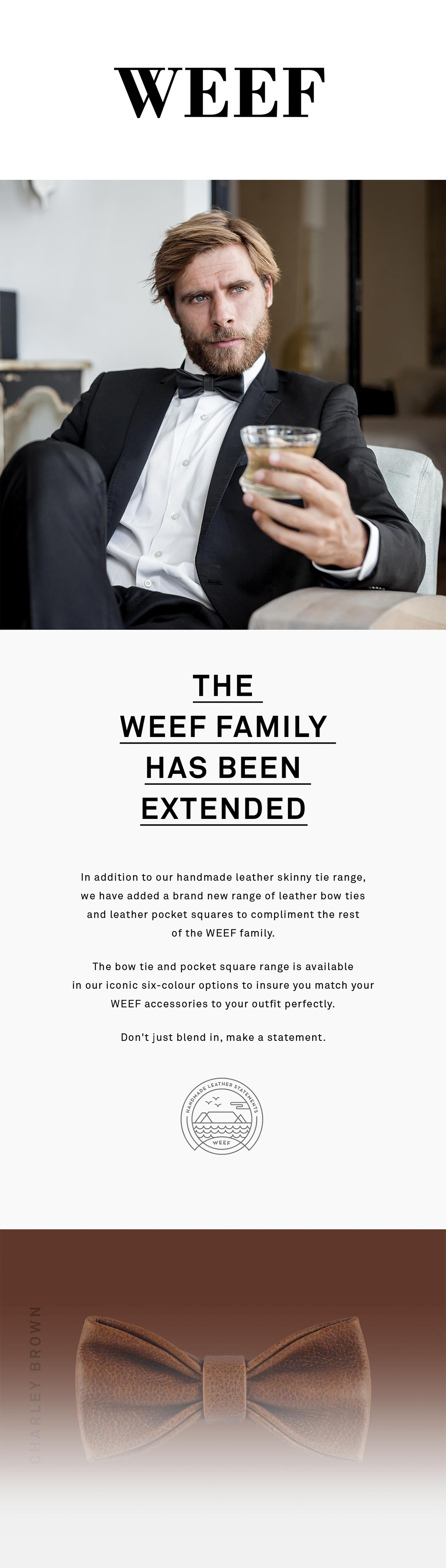 WEEF-Newsletter-01